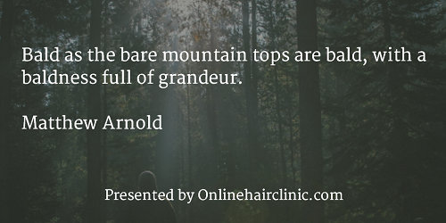"Bald as the bare mountain tops are bald, with a baldness full of grandeur."" ―Matthew Arnold"