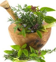 Medicinal plants for hair loss