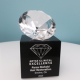 Beverly Hills Hair Transplant Doctor Receives Prestigious Award for Excellence in the Art of Transplants